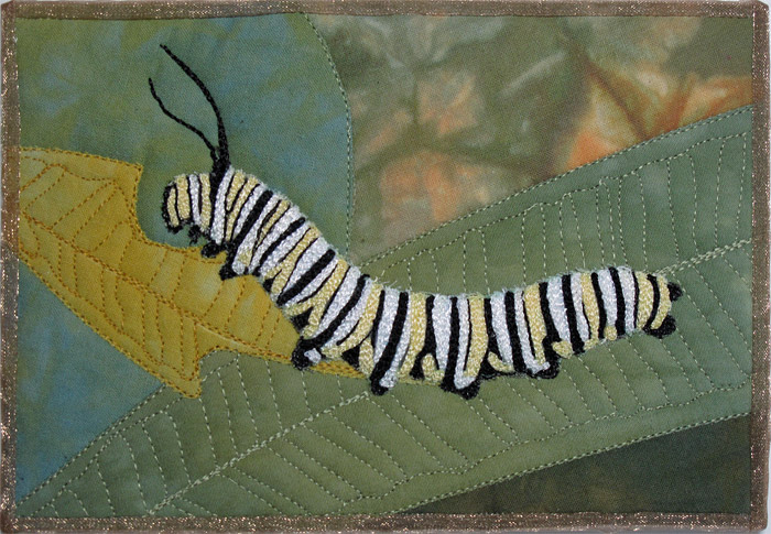 MonarchCaterpillar
